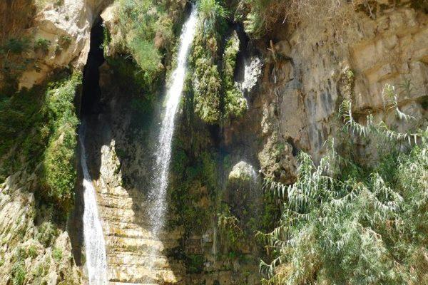 En Gedi – zielona oaza na spalonej słońcem Pustyni Judzkiej