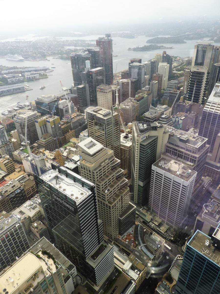 Sydney Tower Eye Ścieżki Mojego Świata