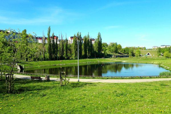 Zbiorniki retencyjne – trasa na idealny spacer