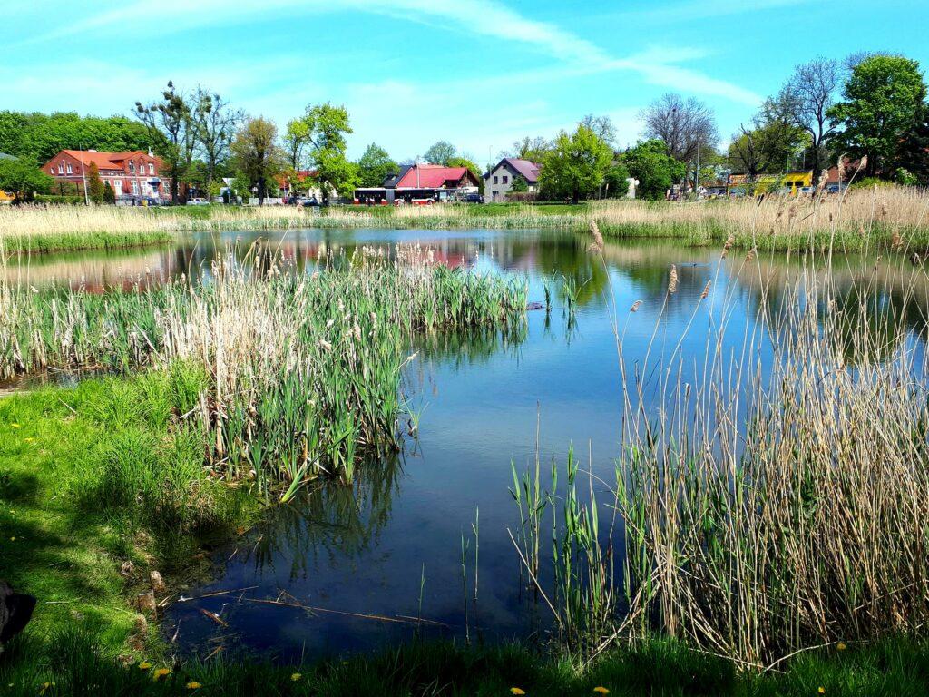 zbiornik warszawska ścieżki mojego świata spacer zbiorniki retencyjne Gdańsk