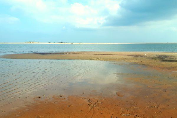 Mikoszewo i rezerwat Mewia Łacha – na prawym brzegu Wisły